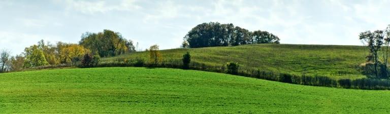 Rolling Wisconsin hills
